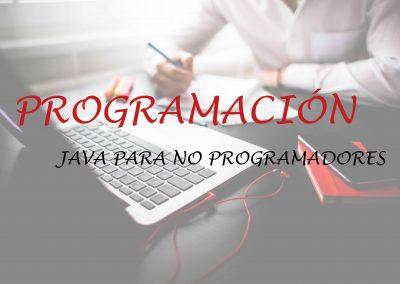 Programación Java Para No Programadores